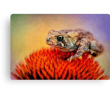 Another Fine Mess Canvas Print