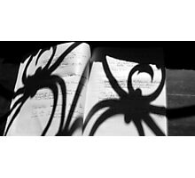 writings of the spider #1 Photographic Print