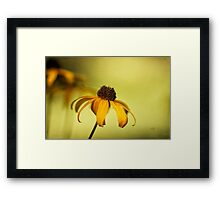 A Gift From August Framed Print