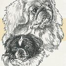 Pekingese Father & Son by BarbBarcikKeith