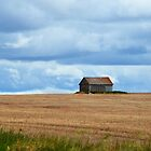 Pleasing Prairie by Tracy Deptuck