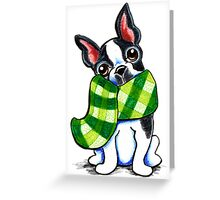 Boston Terrier Happy Plaid Scarf Greeting Card