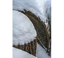Snow Stump Cone Photographic Print