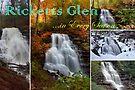 Ricketts Glen ...in Every Season - Calendar Cover by Gene Walls