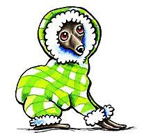 Italian Greyhound Happy Plaid Snowsuit Photographic Print