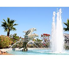 Dolphin Fountain Photographic Print