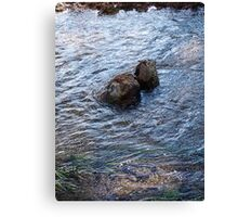 Clear Blue Rush Canvas Print