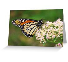 Monarch Butterfly Profile Greeting Card