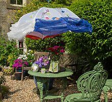 Courtyard garden by Judi Lion