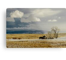 Old Cabin in the Plains  Metal Print