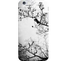 Mysterious Darkman iPhone Case/Skin