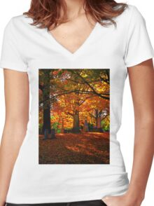 Colorful Resting Spot Women's Fitted V-Neck T-Shirt