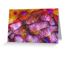 ~ All Colors of Love ~ Greeting Card
