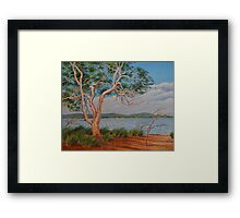 Windy Day on the Swan River Framed Print