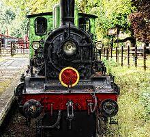Old Steam Train by Karen  Betts