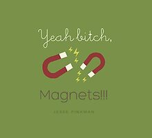 Yeah Bitch, Magnets! (Iphone) by kymunchie