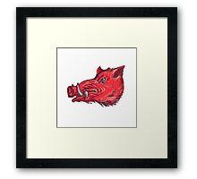 Wild Boar Razorback Head Side Drawing Framed Print