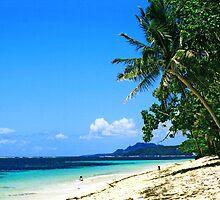 Alegria Beach -  Siargao Island by Heiko Voss