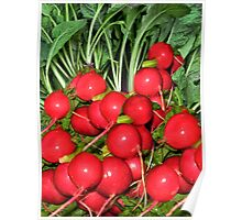 "。◕‿◕。 RADISH (RAPHANUS SATIVUS) RAPHANUS MEANS ""QUICKLY APPEARING"" 。◕‿◕。 Poster"