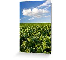 Green and Blue Greeting Card
