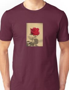 Red Rose Flower Isolated on Sepia Background Unisex T-Shirt