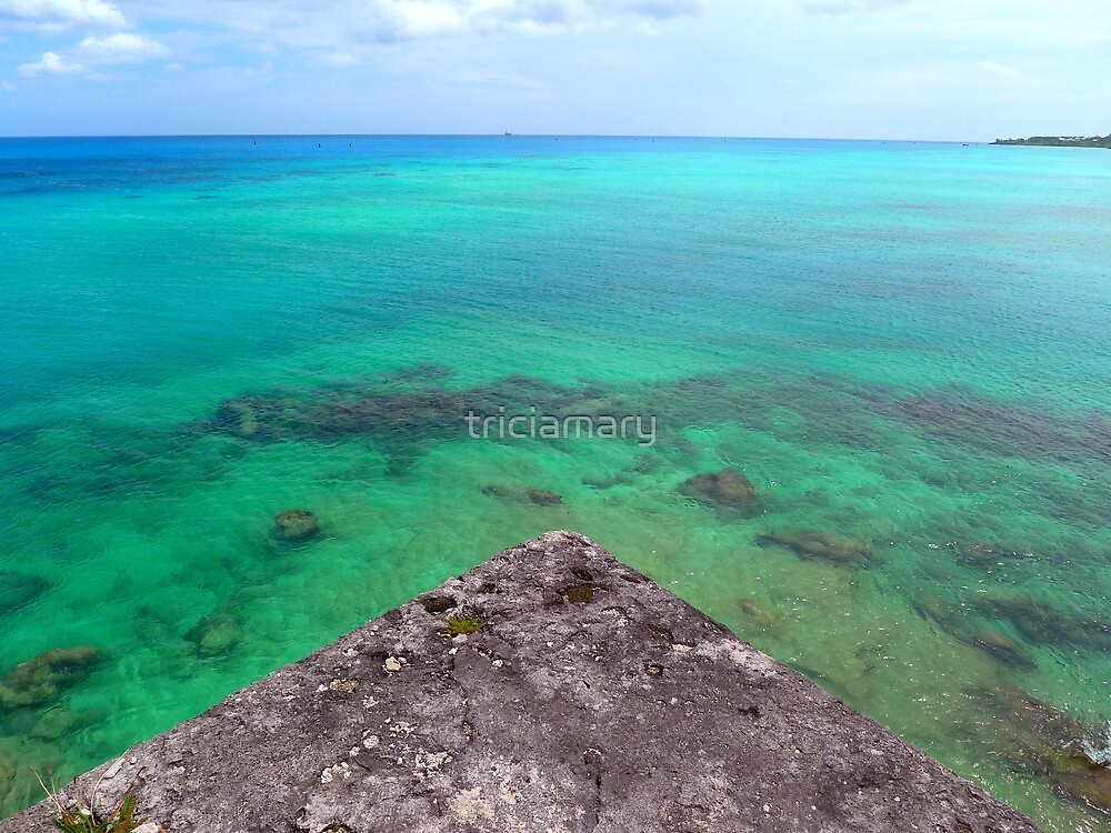 Bermuda Triangle Blues by triciamary