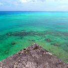 Bermuda Triangle Blues by triciamary