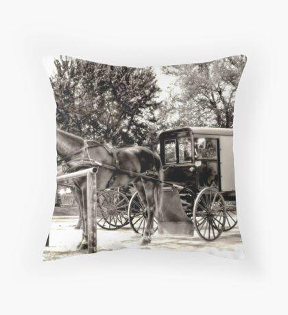 Horses 'n' Buggies Throw Pillow