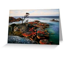 Binalong Bay Tasmania Greeting Card