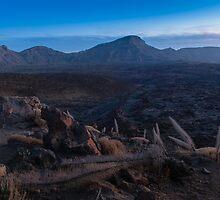 Teide National Park by CrossRoads