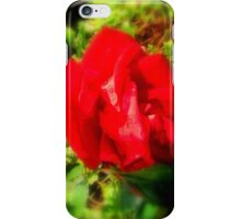 The Red Rose Iphone Case iPhone Case/Skin