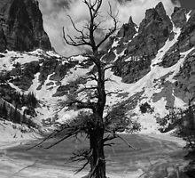 Frozen by Dan9900