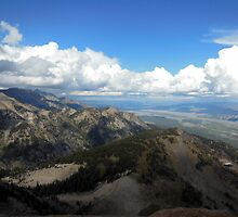 Mountain Top View at Jackson Hole by Steve Upton