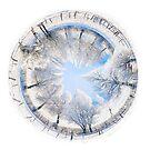 Winter World 5 by Richard Maier