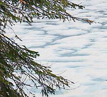 Winter by Harry Oldmeadow