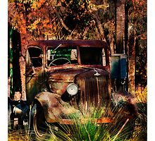 Rust never Sleeps by Tony Shaw