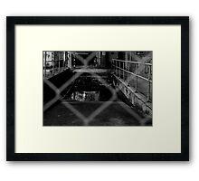QMB #5 Framed Print