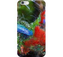 Bathing Rosella 2 iPhone Case/Skin