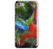 Bathing Rosella 2 iPhone Case/Skin