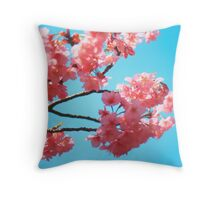 Beautiful Spring Pink Cherry Blossoms Blue Sky Throw Pillow