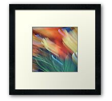 Wide brush Framed Print