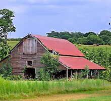 Country Farm by RickDavis