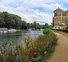 Riverside Walk. by ronsaunders47