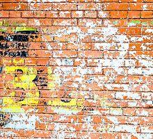 Brick Wall 2 by Photopa
