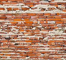 Brick Wall 5 by Photopa