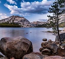 Tenaya Lake by Cat Connor