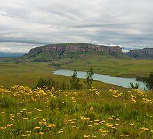 Sterkfontein Dam by CrossRoads