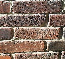 Vintage Bricks by Studio-one