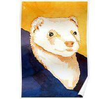 Ferret Portrait Poster