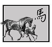 Year of The Horse Photographic Print